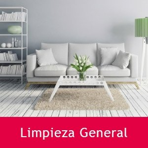 Productos de Limpieza General TOIMPO